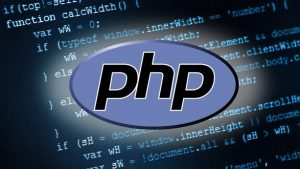 best-php-training-company-in-roorkee