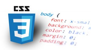 Change The Color of Text | Use of CSS With HTML