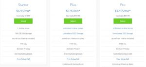 Bluehost pricing of online stores