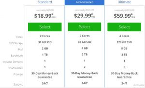 Bluehost pricing for VPS hosting